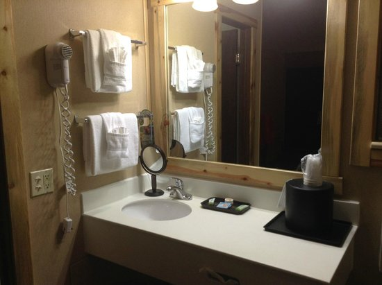 Hotel Estes: Bathroom area