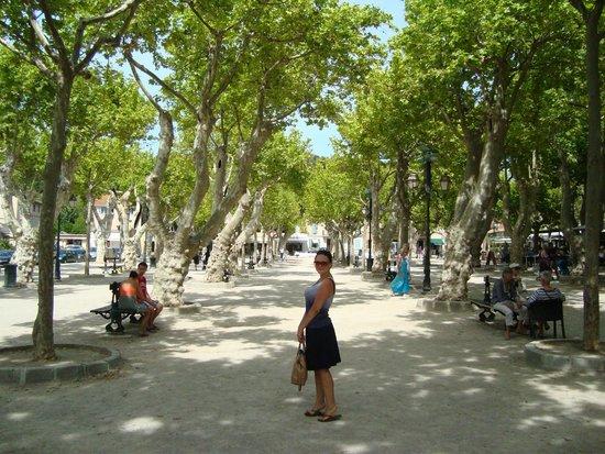 Playa Pampelonne: Прелестный сквер