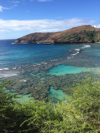 Hanauma Bay Nature Preserve: Just Beautiful