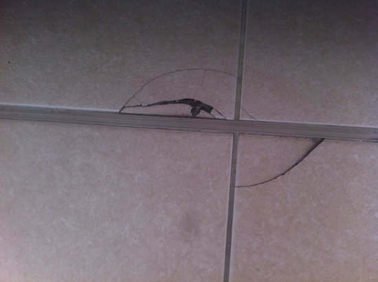HM Martinique: Damaged floor tiles in bedroom
