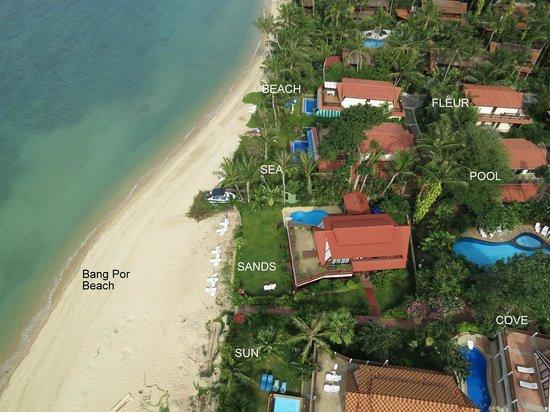 Laguna Villas : Coconut Laguna Beach view