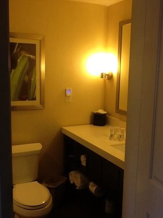 Hilton Garden Inn Los Angeles Marina Del Rey : small bath but well appointe dwith all the amenities