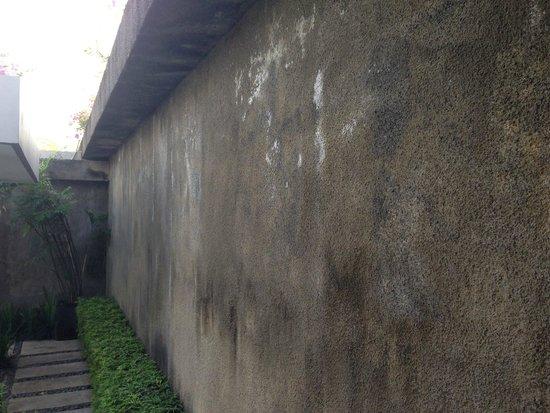 Ziva Villas : Mouldy unpainted walls