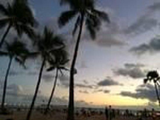 Ala Moana Beach Park: ヤシの木を入れると一層ハワイらしく