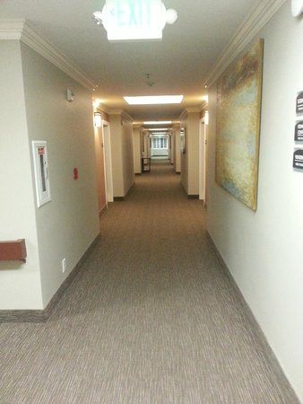 BEST WESTERN PLUS Airport Plaza: hallway