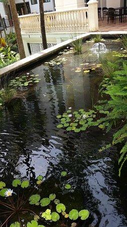Wyndham Grand Rio Mar Puerto Rico Golf & Beach Resort: The water garden