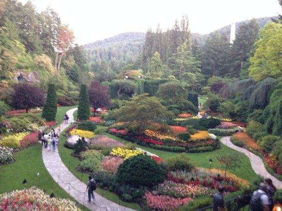 Butchart Gardens: The amazing sunken gardens