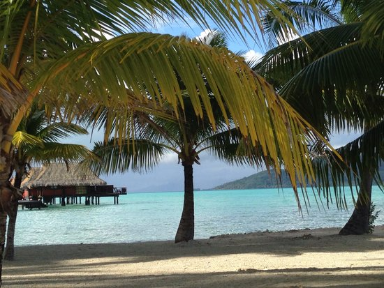 Vahine Island - Private Island Resort: Spiaggia