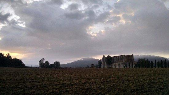 Abbazia di San Galgano: Alba