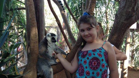 Monkey Park: С лемуром