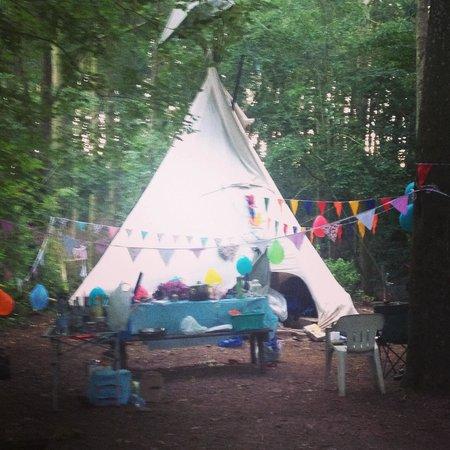Hollybush Inn & Campsite: Better than feared