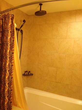 Aulani, a Disney Resort & Spa : Rain Shower Head