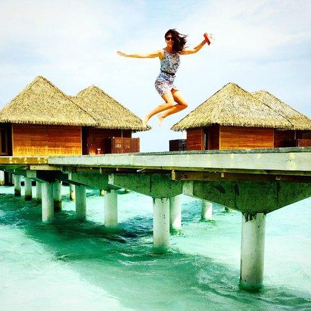 Kandolhu Maldives : Ocean Villas
