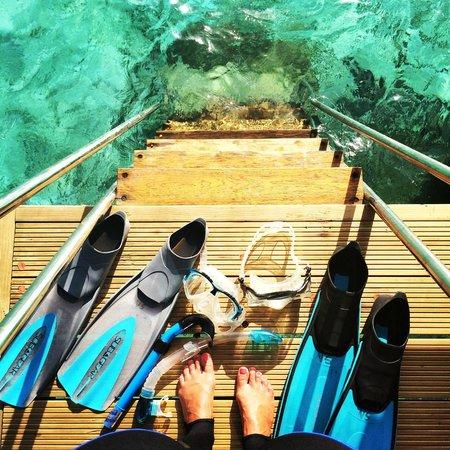 Kandolhu Maldives : Snorkeling