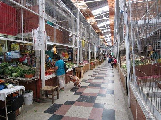 Feria Modelo de Ovalle - Interior