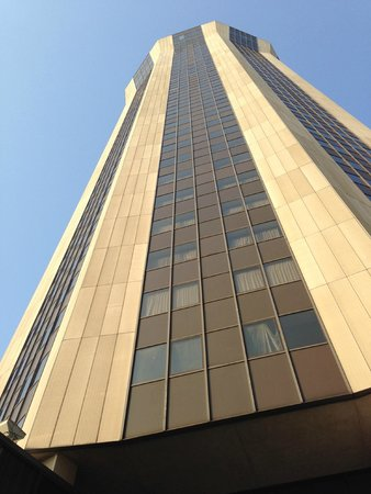 Wyndham Springfield City Centre: It's high!