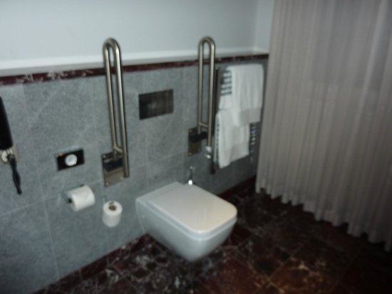 InterContinental Porto Palacio das Cardosas: Disabled access room toilet