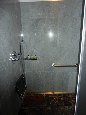 InterContinental Porto Palacio das Cardosas: Disabled access room shower