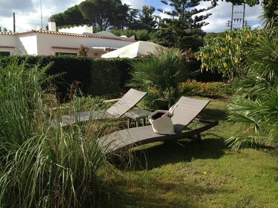 Hotel Villa Ceselle: il curatissimo giardino della Villa Ceselle