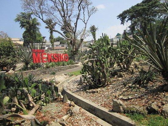 Hasil gambar untuk taman mexico