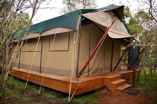 Mara Bush Camp - Private Wing: Unser Zelt