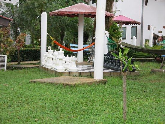 TOP Resort: hammock just beside the pool