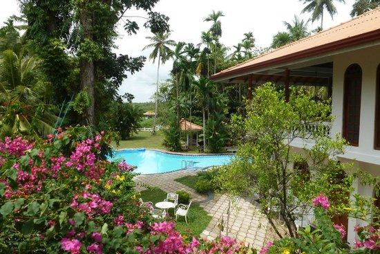 Ayubowan Swiss Lanka Bungalow Resort : View from Penthouse Suite