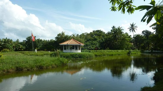 Ayubowan Swiss Lanka Bungalow Resort : Ayubowan Lake & Meditation Cabanas