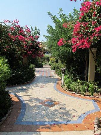 Atrium Palace Thalasso Spa Resort & Villas : Hotel grounds