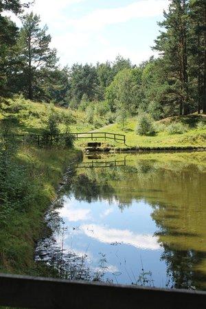 Highland Folk Museum: Curling pond