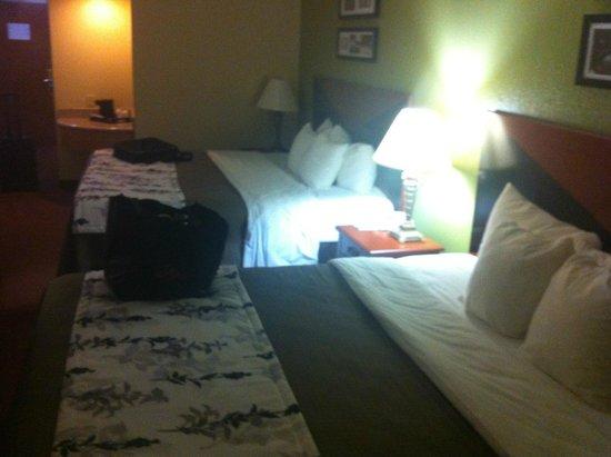 Sleep Inn and Suites: King Room 1