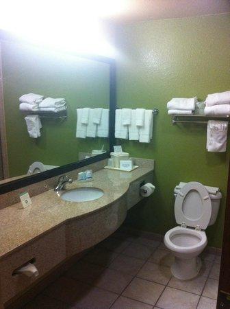 Sleep Inn and Suites: Bath 1