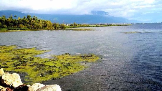 Erhai Lake: 早晨