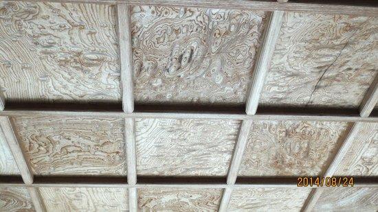 Toyama Memorial Museum of Art : 表玄関の天井
