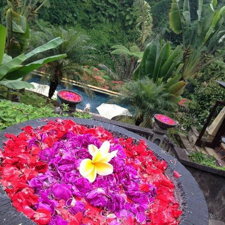 Bagus Jati Health & Wellbeing Retreat: The amazing grounds at Bagus Jati