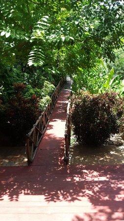 Casa Hamaca Guesthouse : Extérieur de la villa