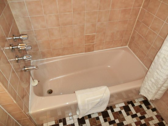 Salisbury Hotel : バスルーム