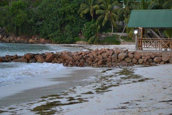 Hotel L'Archipel: plage de l'hôtel