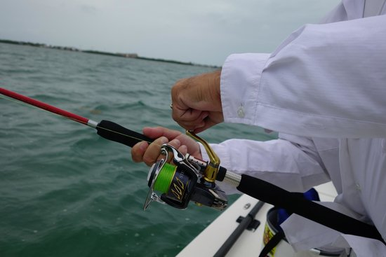 Shimano Stella sw5000 and Terez whoopin a tarpon - Picture