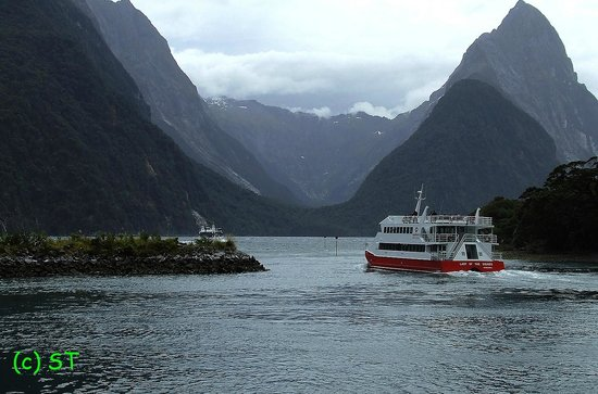 Milford Sound: Start Sailing