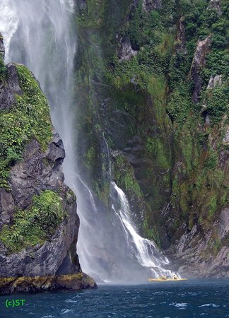 Milford Sound: Stirling waterfall