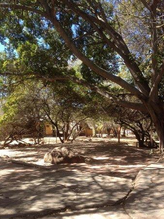 Mabula Game Lodge: Vers les chambres