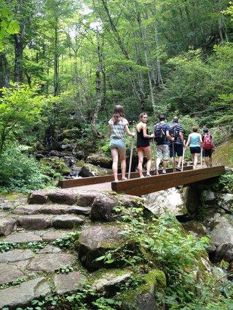 Satoyama Experience : Hiking up the mountain