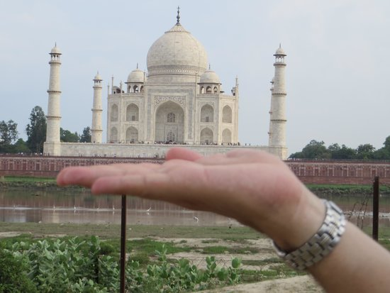 When In India Tours: Had to do it !!