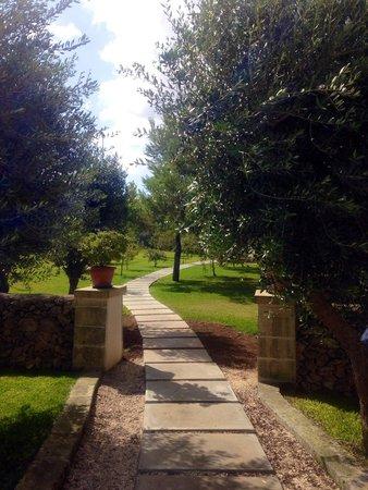 Hotel Village Gabriella: Il giardino