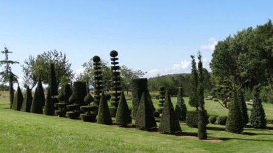 Eyrignac et ses Jardins : arbre sculté