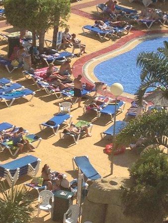 Hotel Flamingo Oasis: pool