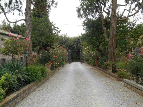 Relais Castelluccio Palusse: viale d'ingresso