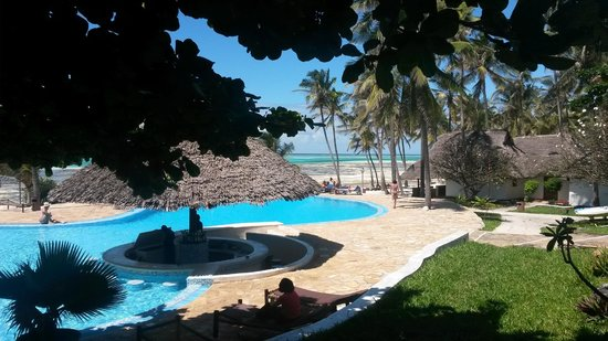 Karafuu Beach Resort and Spa : Pool