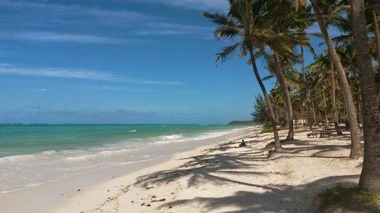 Karafuu Beach Resort and Spa: Stran nach rechts richtung